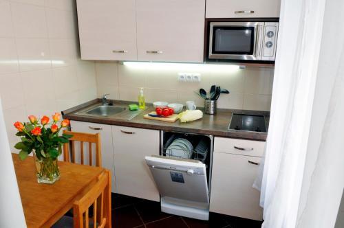 Кухня или мини-кухня в Pension Prague City