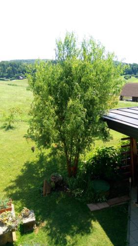 Сад в Gostišče Lunca