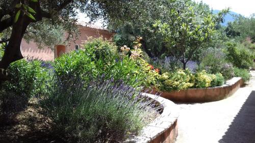 A garden outside Les Jardins de l'Ermitage