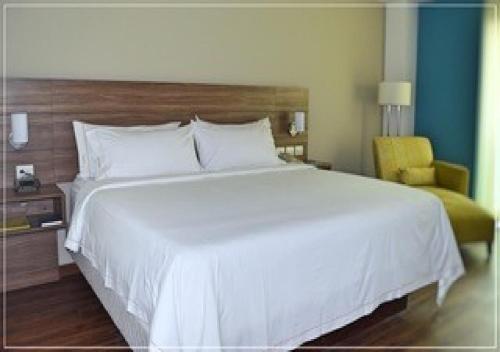 Cama o camas de una habitación en Holiday Inn Express Villahermosa