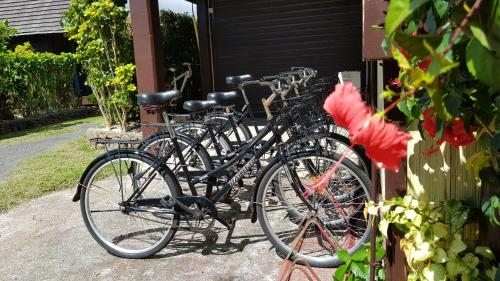 Biking at or in the surroundings of Hotel Kaveka