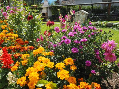 A garden outside Орбелус
