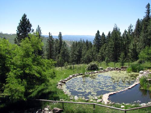 A view of the pool at Whitebird Summit Lodge or nearby