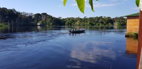 The swimming pool at or near Amazon Arowana Lodge