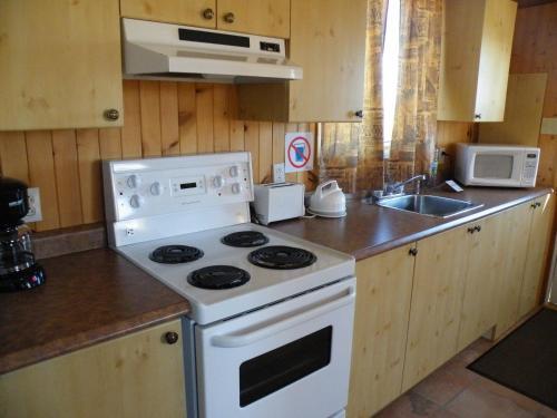 A kitchen or kitchenette at Chalets Shipek