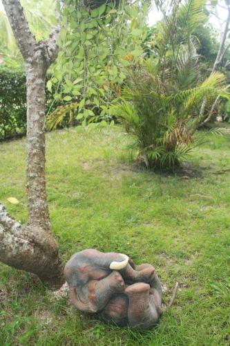 A garden outside Shanti Boutique Hotel
