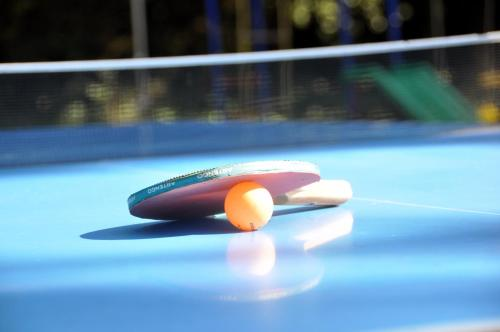 A pool table at Chambres d'Hotes Domaine des Machottes