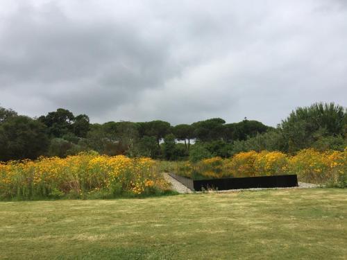 Natuurlandschap vlak bij het vakantiepark