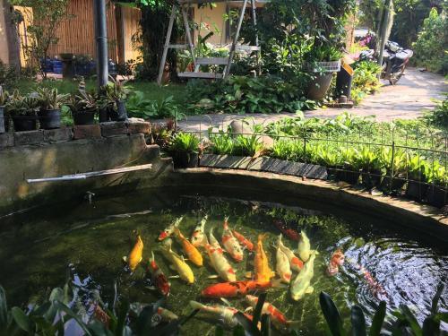 A garden outside Khoum Xieng Thong Boutique Villa