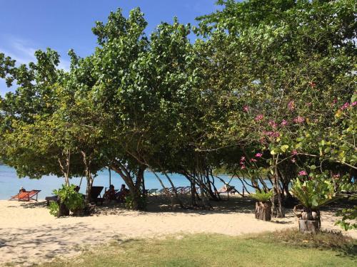 Aed väljaspool majutusasutust Bangbaobeach Resort