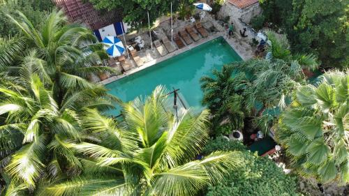 A view of the pool at Nomadas EcoHostel or nearby
