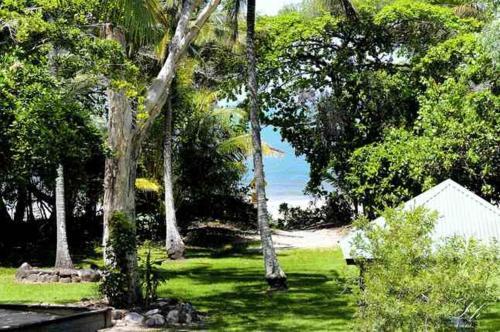 A garden outside Plantation House 1 Spacious 4 Bedroom House Near Beach WIFI Netflix Telstra TV Playground Pool BBQ