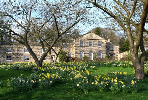 Harewood Estate Cottages