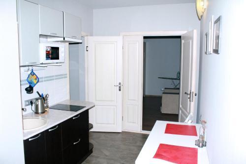 Кухня или мини-кухня в Apartments on Stepana Razina