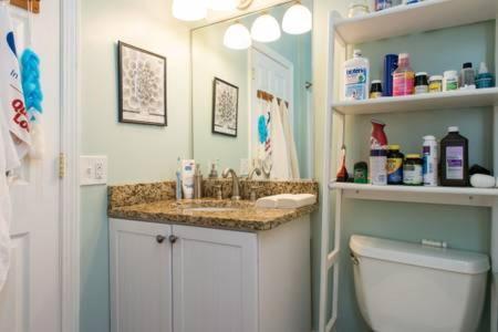 A bathroom at Warm Cozy 1st Floor Apartment in Milford Close to Major Cities in Boston
