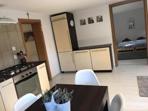 A kitchen or kitchenette at Przytulne mieszkanie w urokliwej okolicy