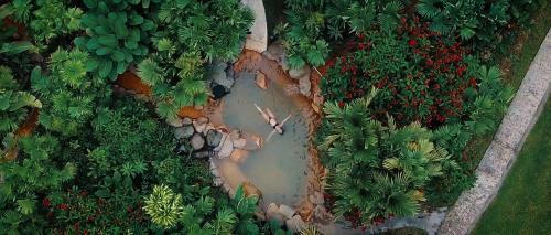 A bird's-eye view of Arenal Paraiso Resort & Spa