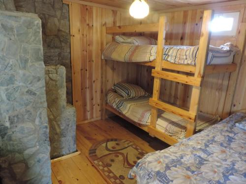 A bunk bed or bunk beds in a room at Semeyniy otdyh na Zelenoy 33