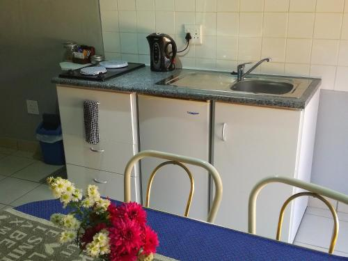 A kitchen or kitchenette at Gypsy Guest House Clarens