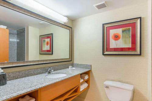 A bathroom at Comfort Suites at Virginia Center Commons