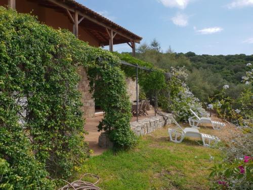A garden outside Villas Valinco Capicciolo vue-proche mer-piscines