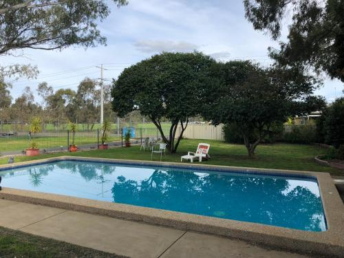 The swimming pool at or near Wattle Motel