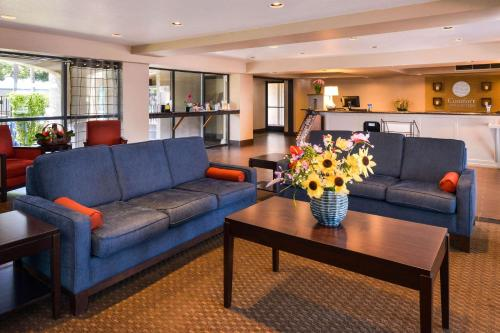 The lobby or reception area at Comfort Inn & Suites Rancho Cordova-Sacramento