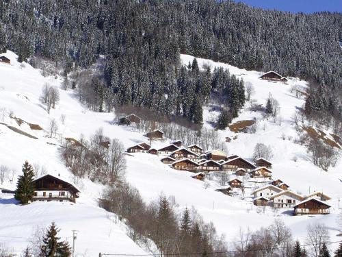 Les Myosotis during the winter