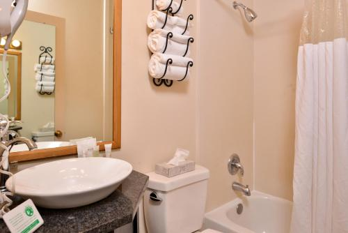 A bathroom at Stage Coach Inn
