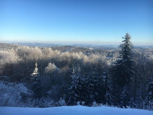 Obiekt Schronisko Górskie PTTK na Jaworzynie Krynickiej zimą