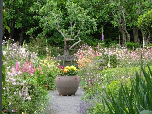 A garden outside Old WesleyDale Heritage Accommodation