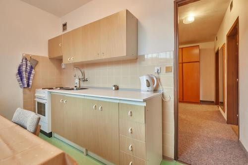 A kitchen or kitchenette at Apartmany Firn