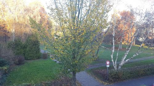 A garden outside Faldernpoort