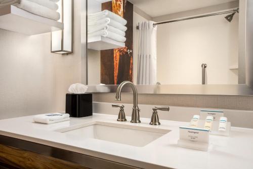 A bathroom at Hilton Garden Inn Minneapolis Airport Mall of America