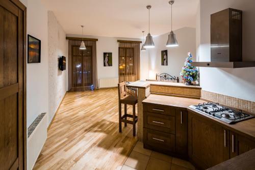A kitchen or kitchenette at OnLviv Apartments Rynok Square 25