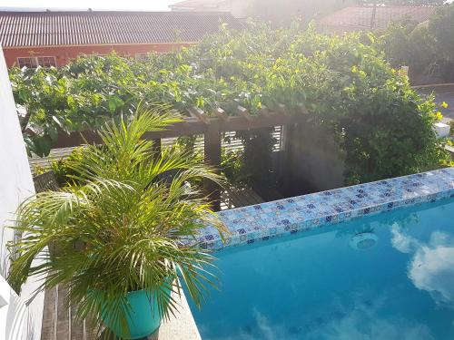 A piscina localizada em Guesthouse Curacao ou nos arredores
