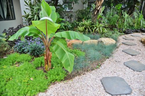 Cresta Oasis Hotelにある庭
