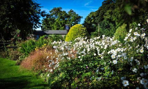 A garden outside The Wyvill Arms