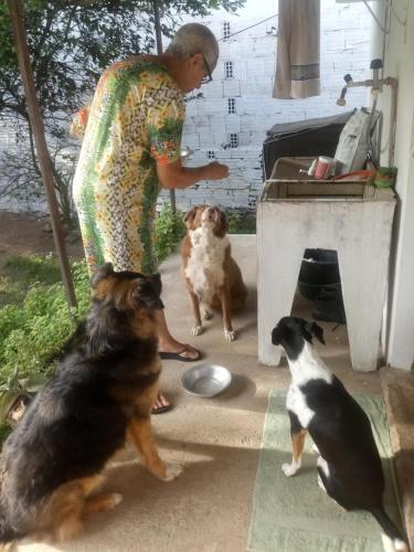 Pet ou pets ficando com hóspedes em Casa da Russa