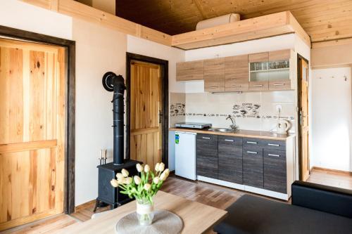 Kuchnia lub aneks kuchenny w obiekcie Tarasy nad Solina