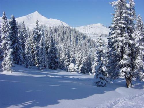 Burnout Wildalps im Winter