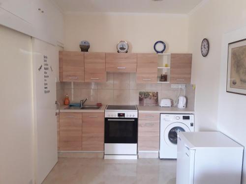 A kitchen or kitchenette at Nicosia Luxury Studio