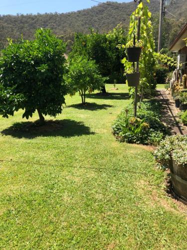 A garden outside 725 Myrtleford-Yackandandah Road