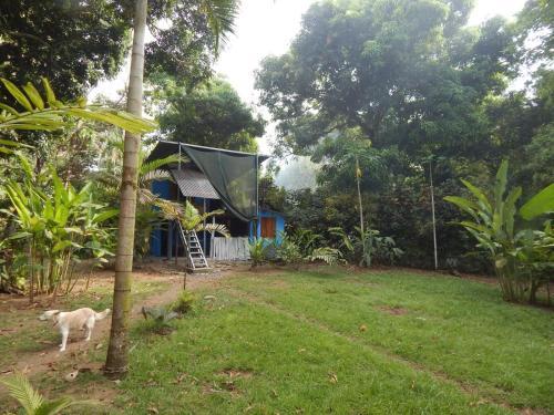 A garden outside VISTA AL MAR