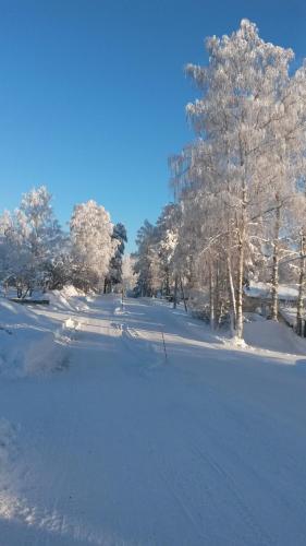 Kyykerin Kartano talvella