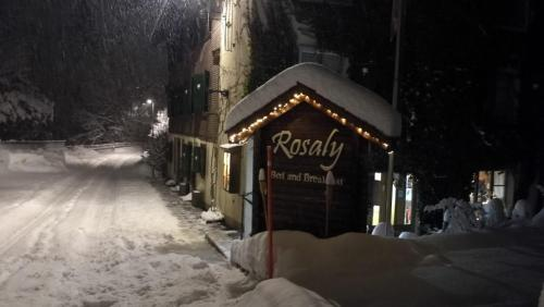 B&B Rosaly during the winter