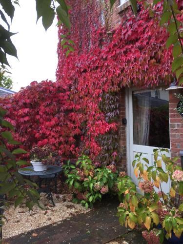 The Dovecote, Stoke Farthing Courtyard