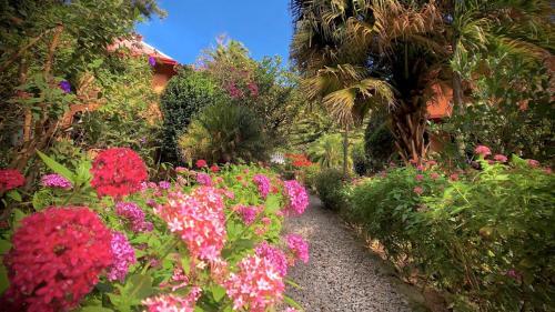 Jardín al aire libre en Boquete Garden Inn