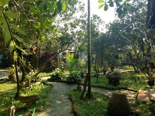 A garden outside Tam Tinh Vien Homestay