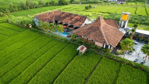 Blick auf Kampung Canggu aus der Vogelperspektive